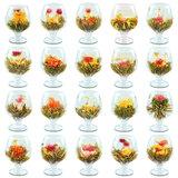 Blooming Tea - Flowering Tea_